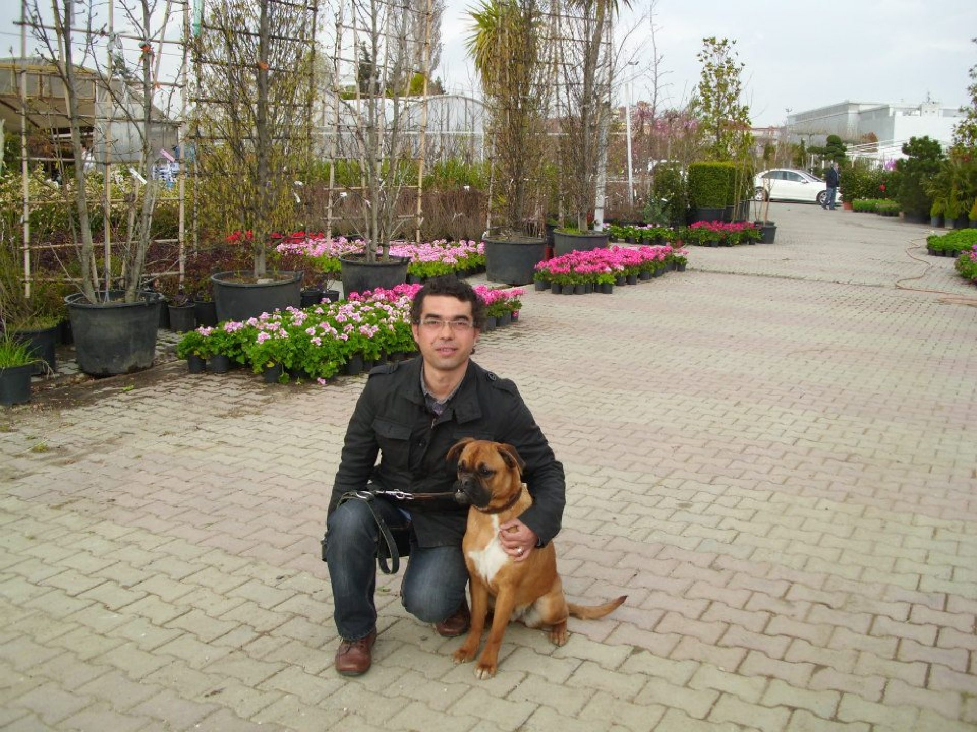 Yerinde Pozitif Köpek Eğitimi